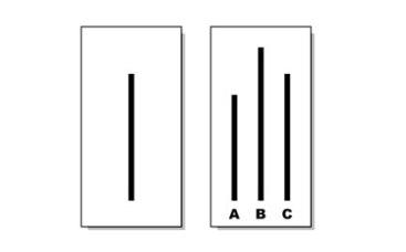 As linhas de Asch.